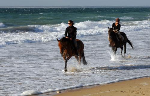 Equitation sur l'ile de Ré